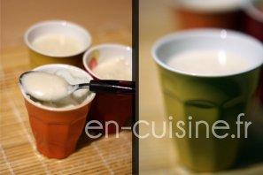 Recette crèmes dessert à la noix de coco façon Danette au Thermomix